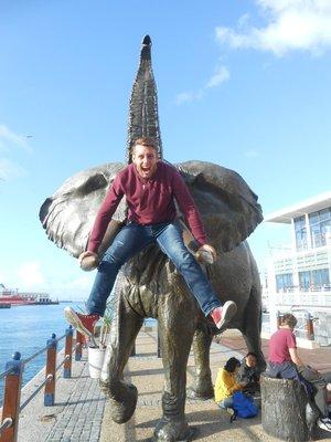 Der Elefanten Schreier