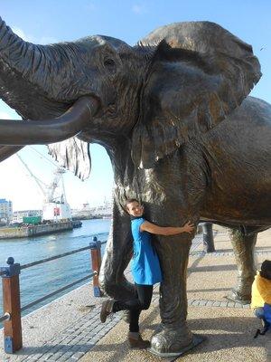 Meine Elefanten Liebe