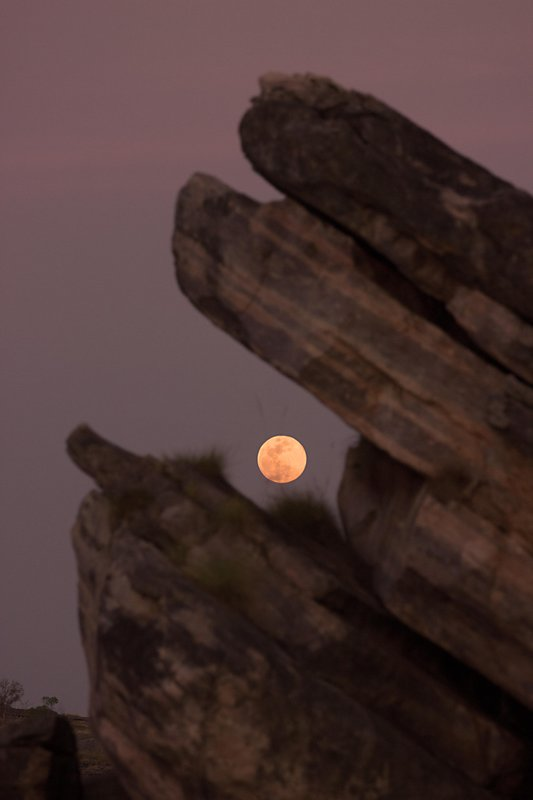 large_Moon_Rise_Over_Kakadu.jpg