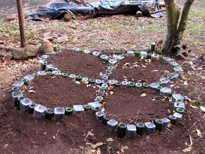 Herb Garden Made of Rum and Wine Bottles (as designed by Emma and Ming)