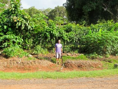 The_Communal_Garden.jpg
