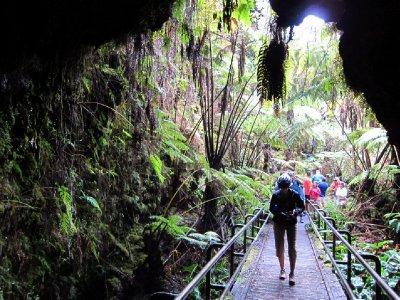 Hilo Lava Tunnel