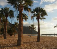 A beach on Tenerife