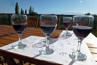 Winery Tour in Mendoza