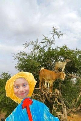 Joe with goats