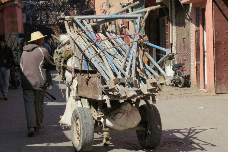 A traditional form of transportation