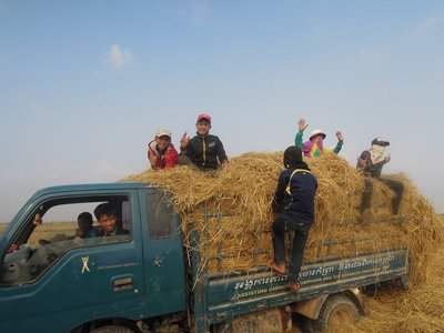 Forking hay can be fun if you are with half a dozen friends!