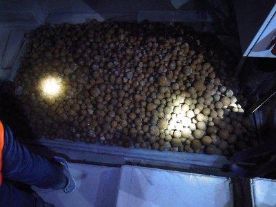 Nazca_53.jpg