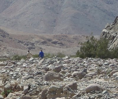 Nazca_66.jpg