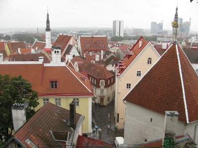 A view of Tallinn from up the hill