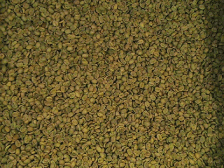 Wholesale green coffee bean