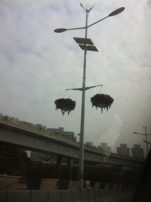 street light of Shenzhen