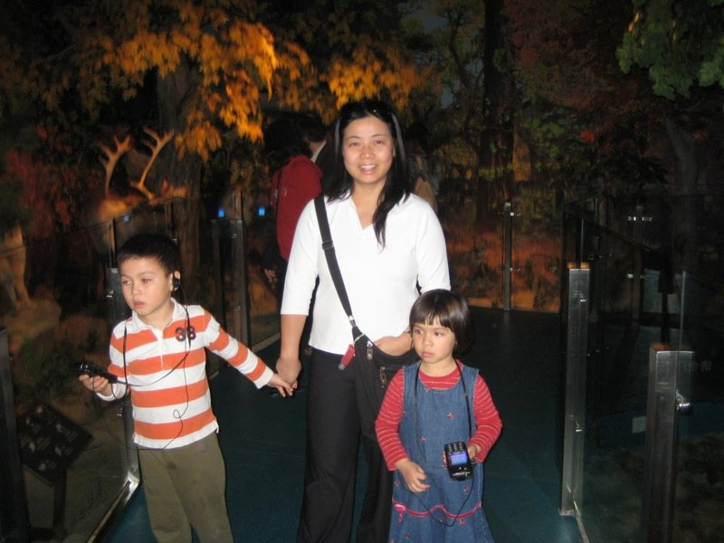 At Shenzhen museum