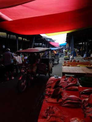 driving through Belen market