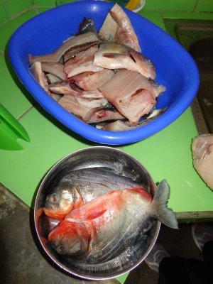 fish preparation
