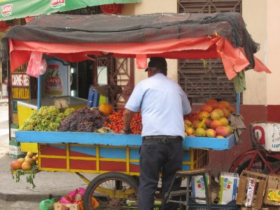 A more substantial, but portable fruit stand.