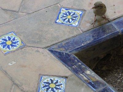 SevillaSpain2_123.jpg