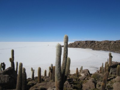 Uyuni_Salar_VofC_063.jpg