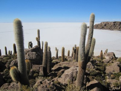 Uyuni_Salar_VofC_066.jpg