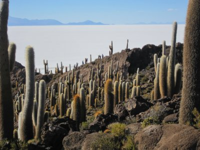 Uyuni_Salar_VofC_096.jpg