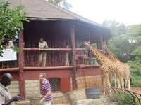 elia_twiga_Nairobi_049.jpg