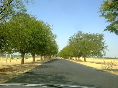 Road to Lepakshi
