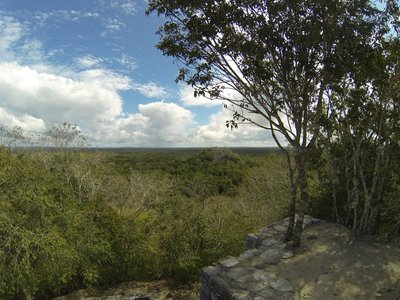 Calakmul Mayan site