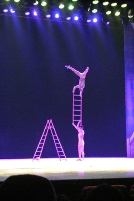 Stige akrobatikk