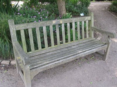 Lyra and Will's bench