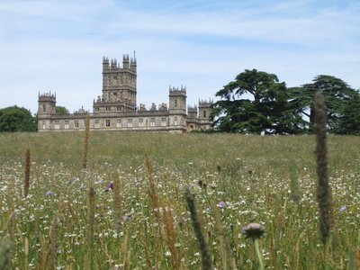 Highclere through the wildflower meadow