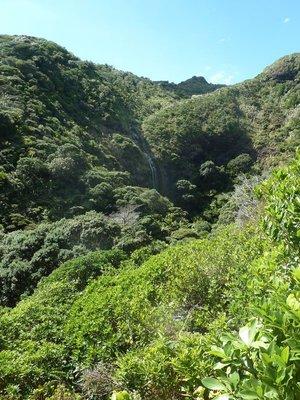 Karekare Waterfall in the Waitakere Ranges Regional Park