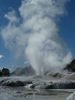 The Pohutu Geyser erupting