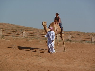 A fellow tourist having a ride on a camel - it looked like torture!