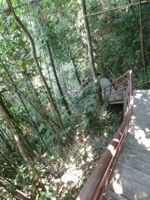 The steps down to the Waterfall