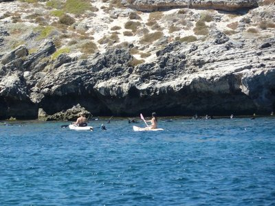 Kayaking and snorkeling amongst the seals on Rottnest Island