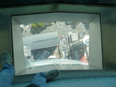 Looking down to the street below through the glass floor of the Skytower Main Observation Level