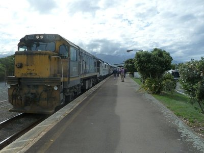 The Coastal Pacific at Kaikoura Station