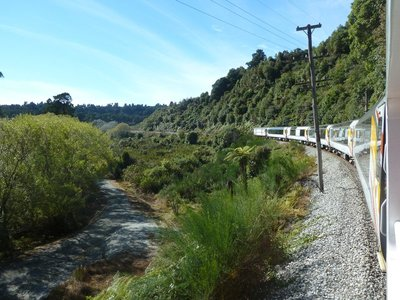 The TranzAlpine makes its way down to the west coast