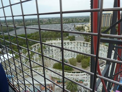 The view of California Screamin Roller Coaster from the top of Mickey's Fun Ferris Wheel