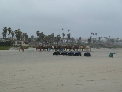 Horses and quad bikes waiting for tourists on Rosarito Beach