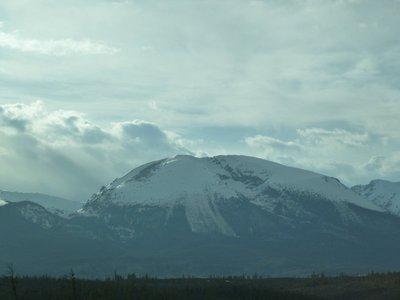 Avalanche tracks on the slopes of Buffalo Mountain near Dillon, Summit County