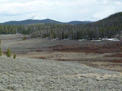 Alpine meadows in Keystone, Summit County, Colorado