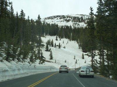Snow drifts alongside us as we climb Trail Ridge Road
