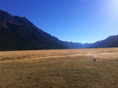 The stunning scenery on the way to Milford Sound