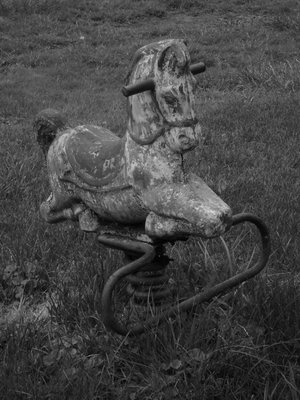 playground horse