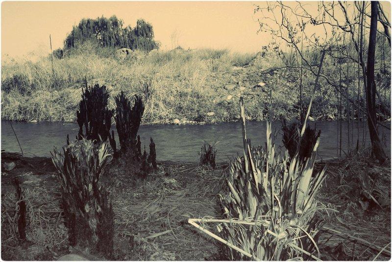 Cacheuta- Mendoza- Argentina