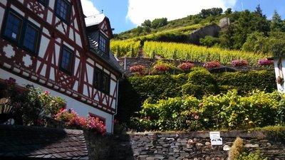 Along the Rhine River - Bacharach