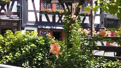 Along the Rhine River - Bacharach