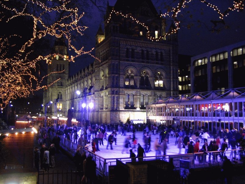 Ice Skating and Natural History Museum
