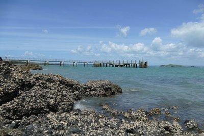 Rotoroa eiland